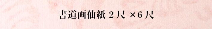 書道画仙紙二尺×六尺