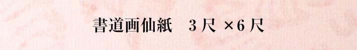 書道画仙紙三六 三尺×六尺