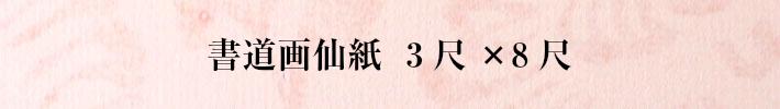 書道画仙紙三尺×八尺