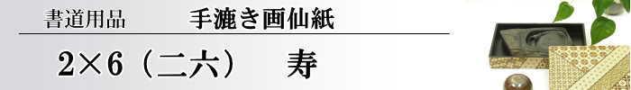 【画仙紙 2x6 (二六)】 寿10枚