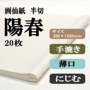 手漉き画仙紙 陽春 20枚