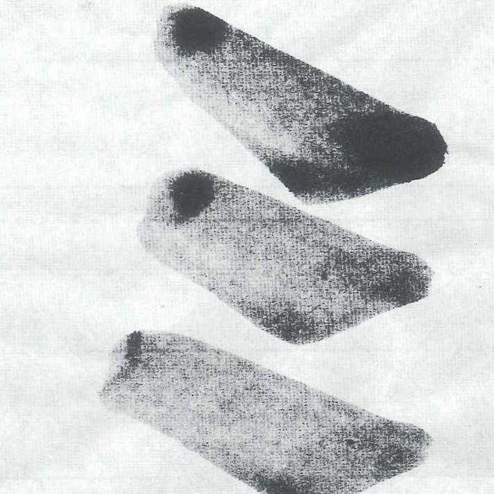 十川製紙の野菊半紙裏から