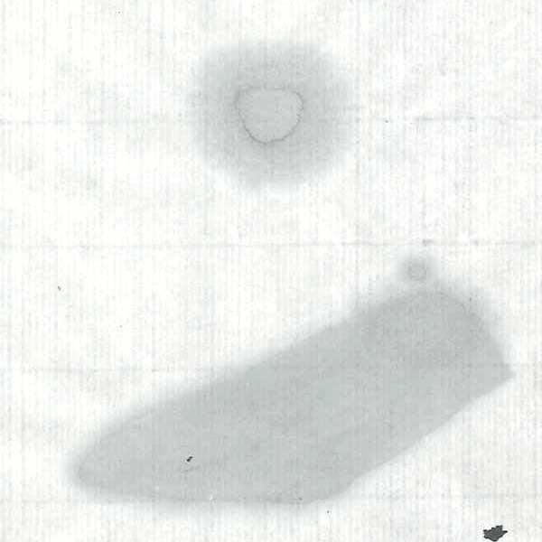 画仙紙 玉雪