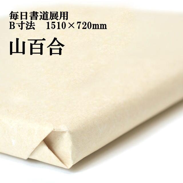 書道用紙 画仙紙 毎日書道展 B寸法 1510×720mm 山百合50枚